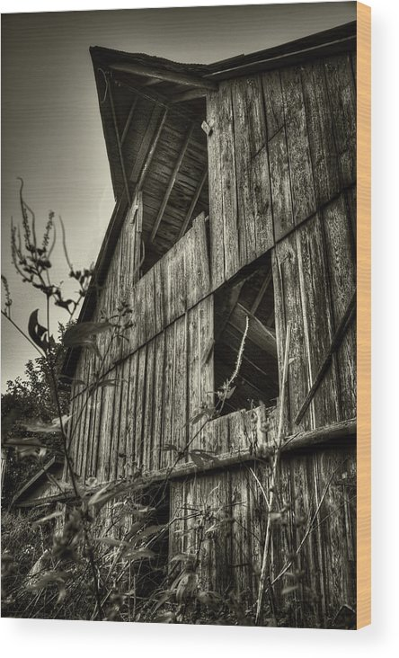 St Lost Louis Wood Print featuring the photograph Lost Barn by Jon Dickson