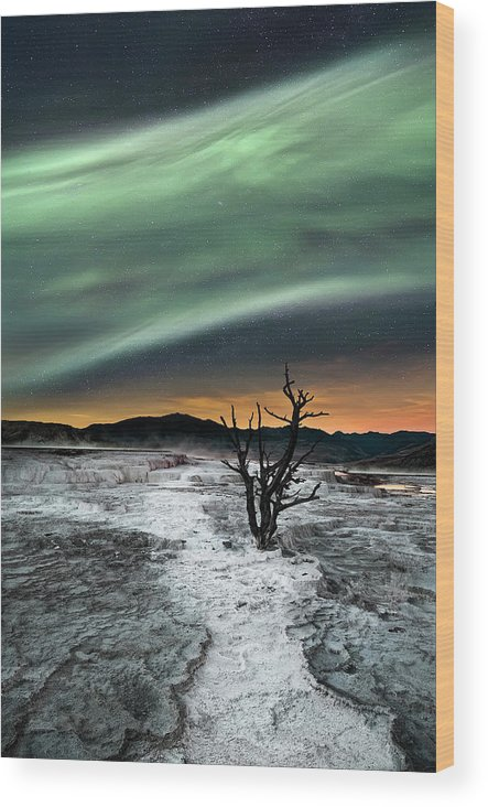 Northern Lights Wood Print featuring the photograph Magic Aurora by Liloni Luca