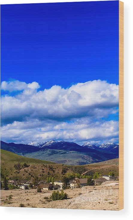 Yellowstone Wood Print featuring the photograph Mammoth Springs by Susie Hoffpauir