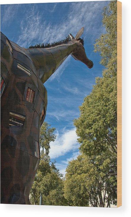 France Wood Print featuring the photograph Marseilles Giraffe by Oleg Koryagin