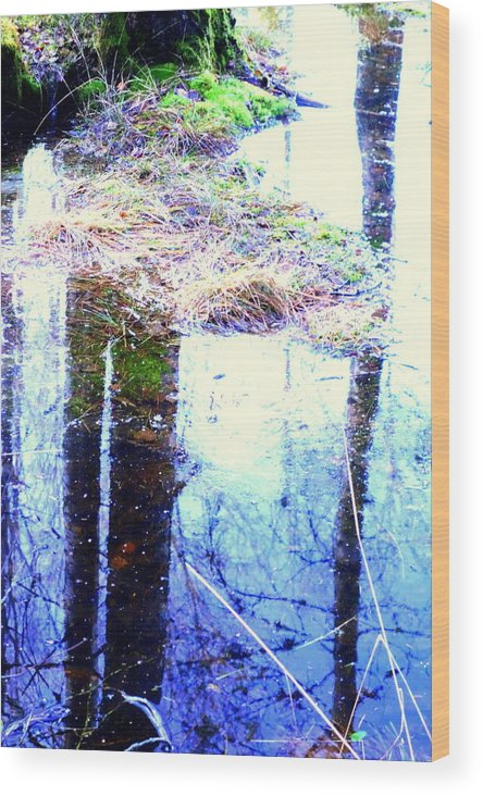 Forest Wood Print featuring the photograph Climbing The Mirror Trees by Hilde Widerberg