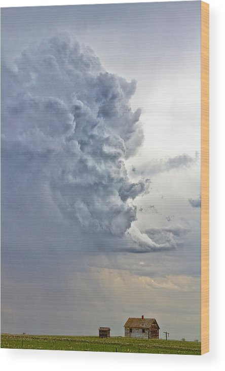 Country Wood Print featuring the photograph Monster Cloud Country by James BO Insogna