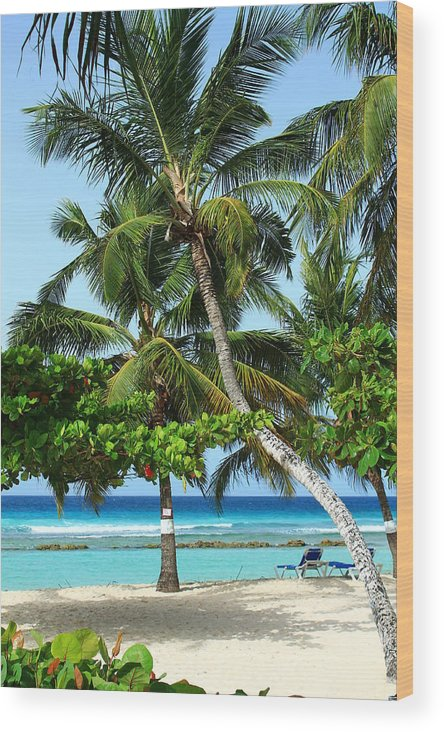 Barbados Wood Print featuring the photograph Morning Beauty by Catie Canetti