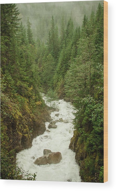 Beauty In Nature Wood Print featuring the photograph Mountain River by Christopher Kimmel