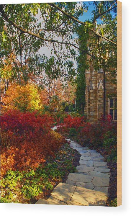 National Cathedral Wood Print featuring the photograph National Cathedral Path by Mitch Cat