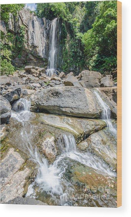 Costa Rica Wood Print featuring the photograph Nauyaca Waterfall by Pablo Wong