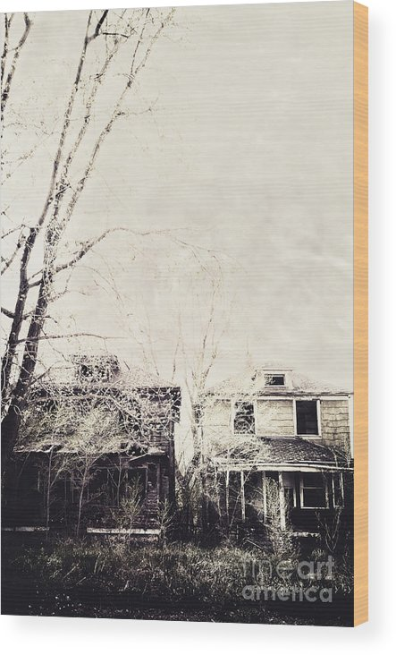 Two Wood Print featuring the photograph Neighborhood by Margie Hurwich