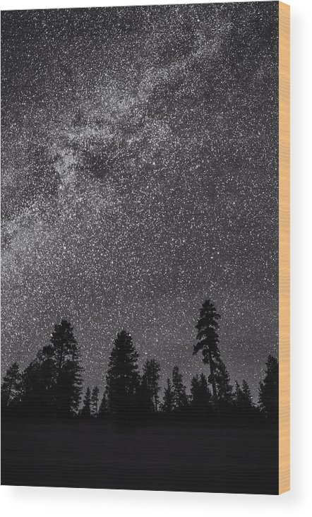 Nancy Strahinic Wood Print featuring the photograph Night Serenity by Nancy Strahinic