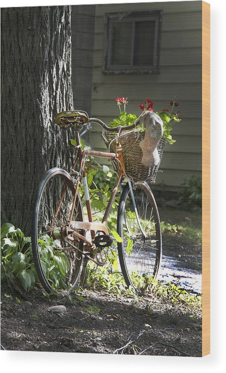 Bicycle Wood Print featuring the photograph Old Bicycle And Hat by Ray Summers Photography