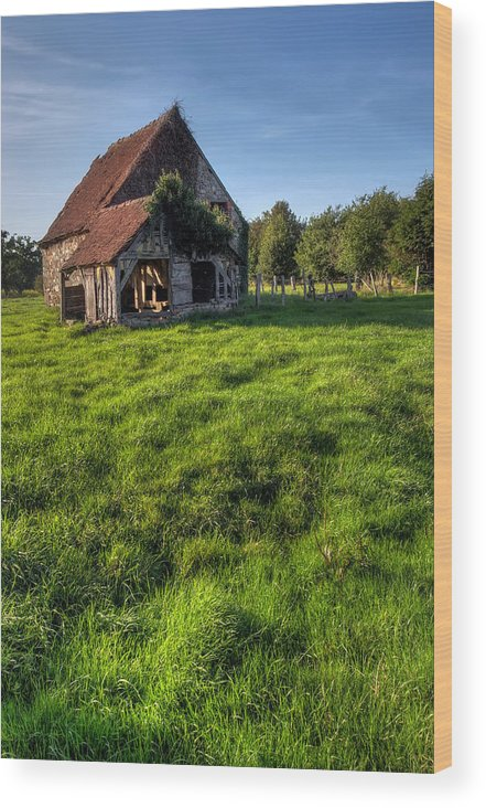 Ancient Wood Print featuring the photograph Old House In Summer by Ioan Panaite