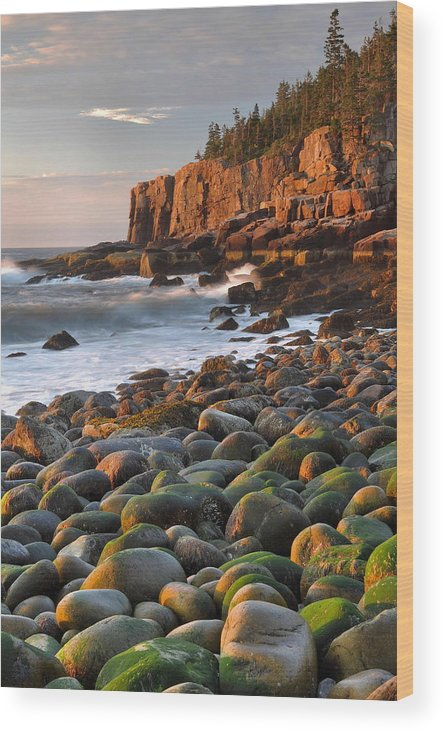Sunrise Wood Print featuring the photograph Otter Cliffs At Sunrise by Stephen Vecchiotti