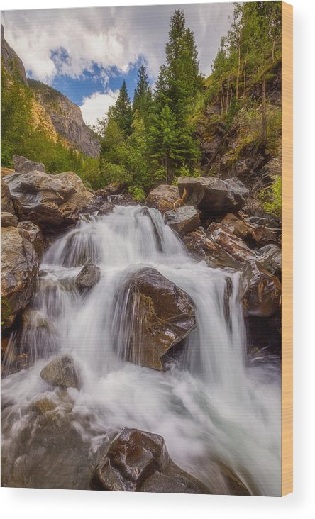 Waterfall Wood Print featuring the photograph Ouray Wilderness by Darren White