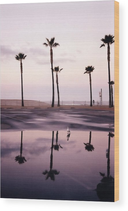 Santa Monica Wood Print featuring the photograph Palm Tree Reflections by Art Block Collections