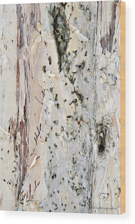 Abstract Wood Print featuring the photograph Paper Bark Astract by Karen E Camilleri