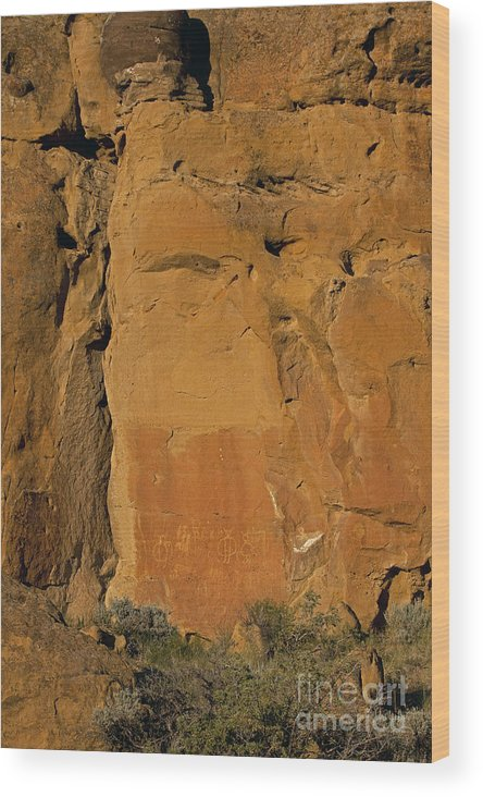 Petroglyphs Wood Print featuring the photograph Petroglyphs  #1054 by J L Woody Wooden