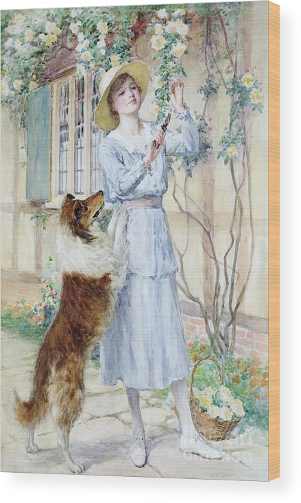 Rose Wood Print featuring the painting Picking Roses by William Henry Margetson