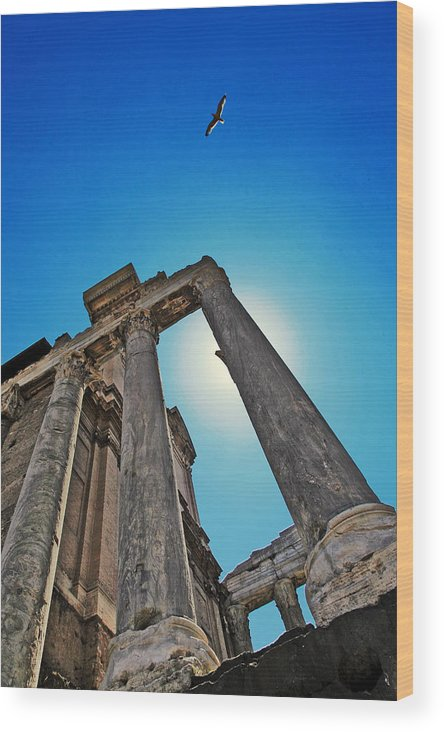 Rome Wood Print featuring the photograph Power To Soar by Sharleen Scholz