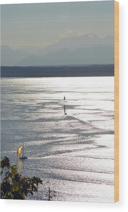 Ocean Wood Print featuring the photograph Puget Sound 2014 by Carol Eliassen