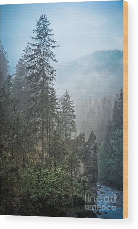 Bavaria Wood Print featuring the photograph Rainy Day by Alexander Kunz
