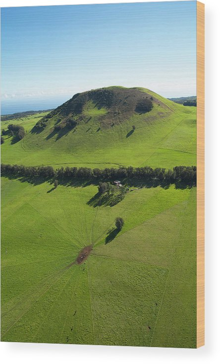Aerial Wood Print featuring the photograph Ranch Land, Kohala Mountain Road, Route by Douglas Peebles
