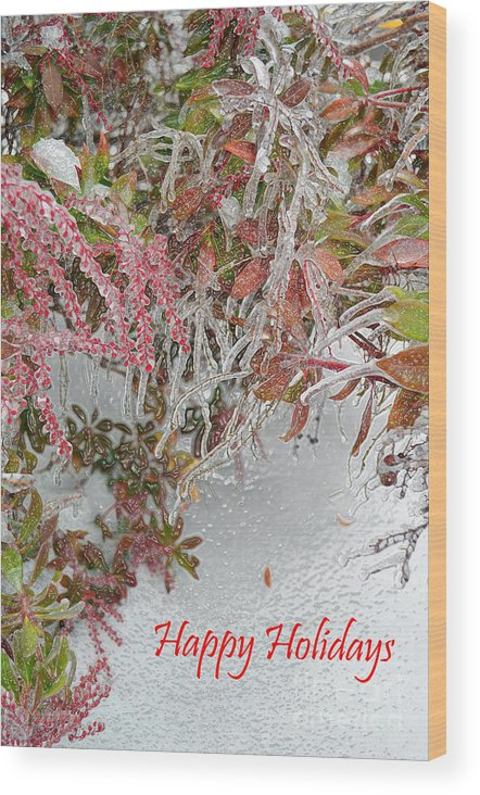 Nature Wood Print featuring the digital art Red Berries Over Snow by Eva Kaufman
