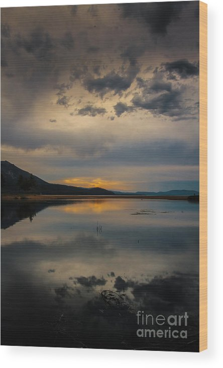 Reflecting Wood Print featuring the photograph Reflecting by Mitch Shindelbower