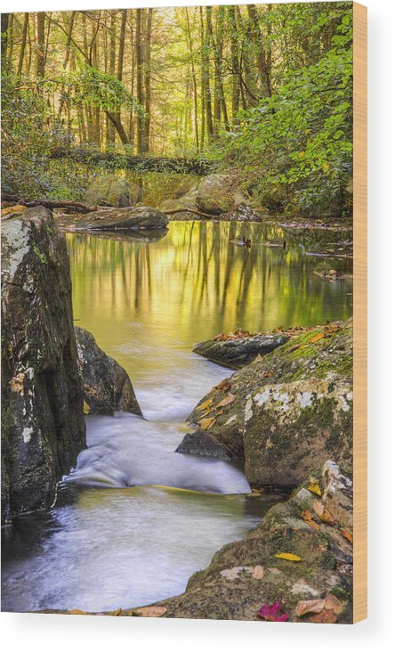Appalachia Wood Print featuring the photograph Reflective Pools by Debra and Dave Vanderlaan