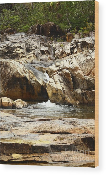 Belize Wood Print featuring the photograph Rio On Pools by Kathy McClure