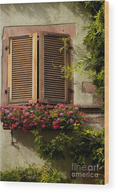 Riquewihr Wood Print featuring the photograph Riquewihr Window by Brian Jannsen