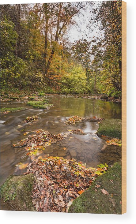 Northumberland Wood Print featuring the photograph River Blyth In Autumn Vertical by David Head