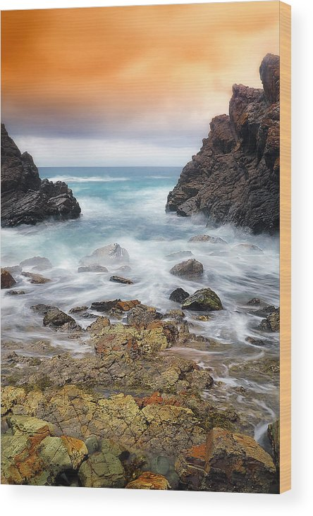 Seascape Photography Wood Print featuring the photograph Rocky Forster 010 by Kevin Chippindall