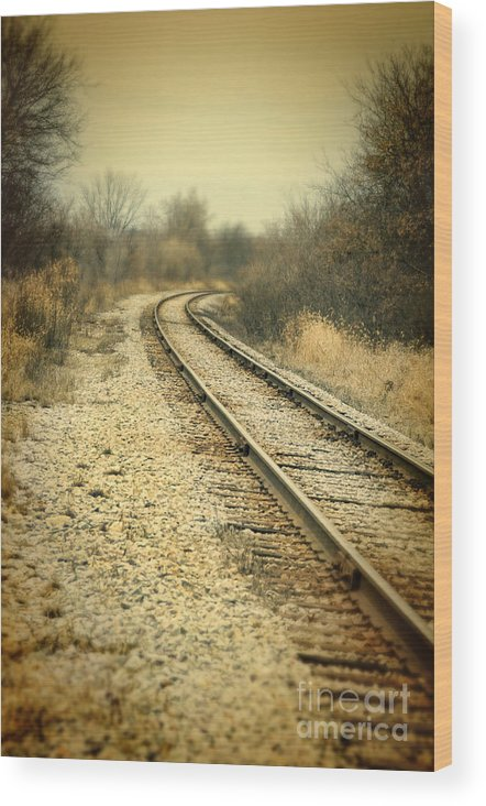 Train Wood Print featuring the photograph Rural Railroad Tracks by Jill Battaglia