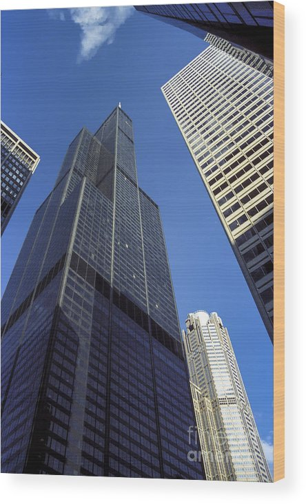 Chicago Wood Print featuring the photograph Sears Tower by Bob Phillips