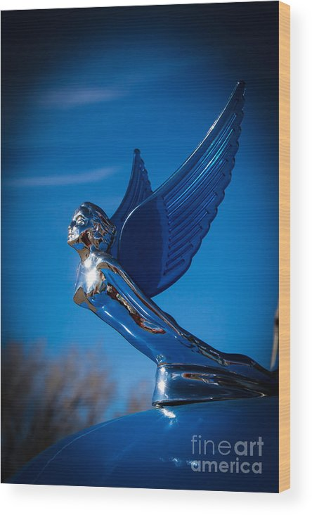 Hood Ornaments Wood Print featuring the photograph Shiny And Blue by Jim McCain