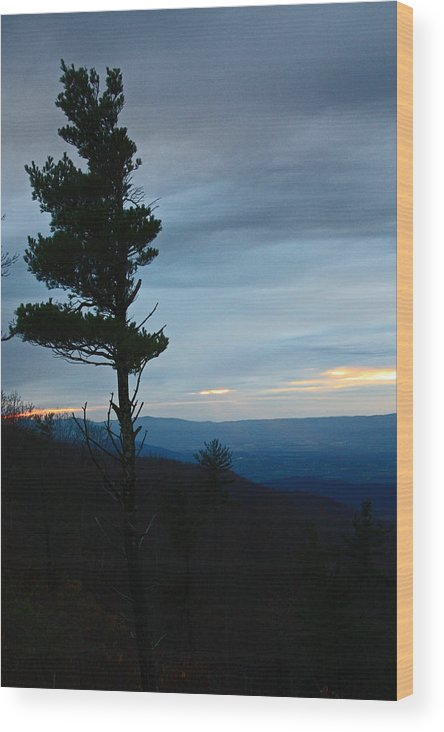 Skyline Wood Print featuring the photograph Skyline3 by Carolyn Stagger Cokley