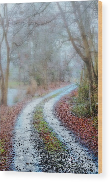 Slip Wood Print featuring the photograph Slippery Travels by Scott Hervieux