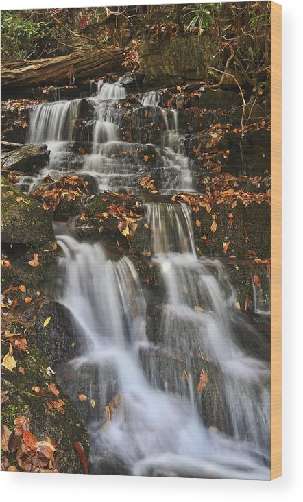 Fall Color Wood Print featuring the photograph Stream And Leaves by Frank Burhenn