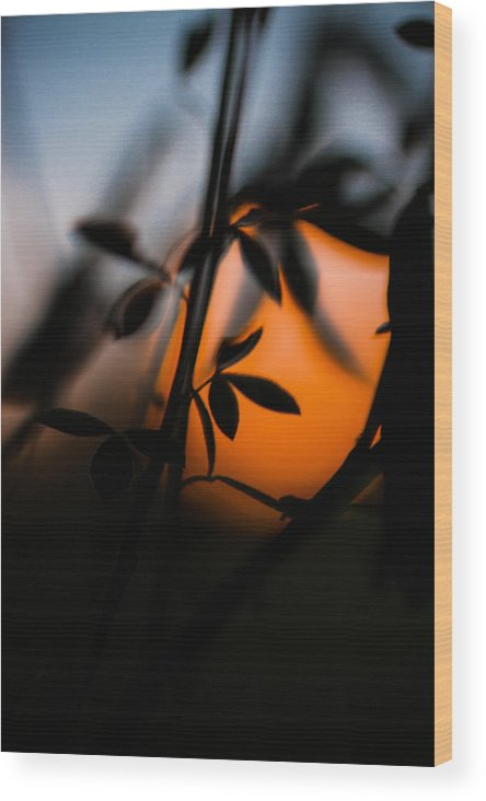 Sunset Wood Print featuring the photograph Sunset Silhouette 2 by Danielle Silveira