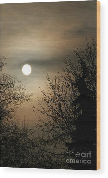 Landscape Wood Print featuring the photograph Super Sunday by Steve Augustin