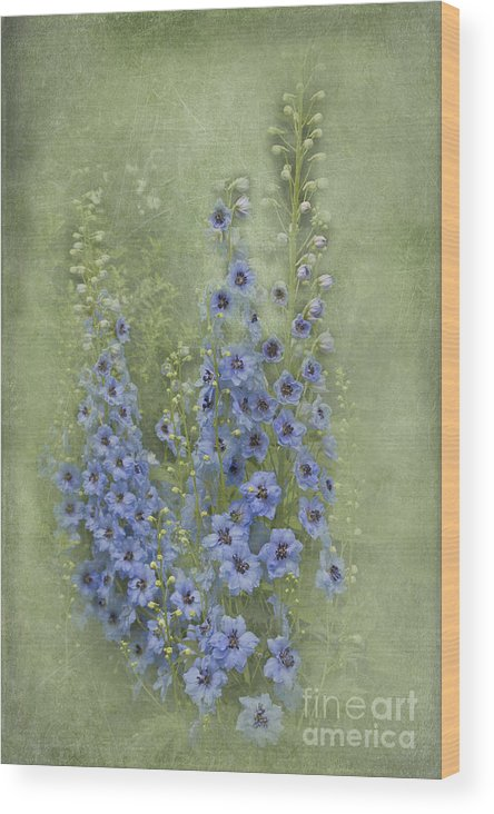 Blue Wood Print featuring the photograph Tall Blues by Michelle Orai