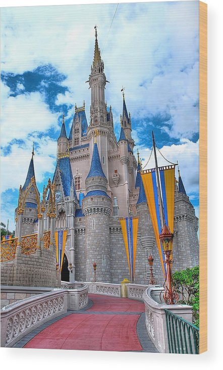 Architecture Wood Print featuring the photograph The Castle by John Panella