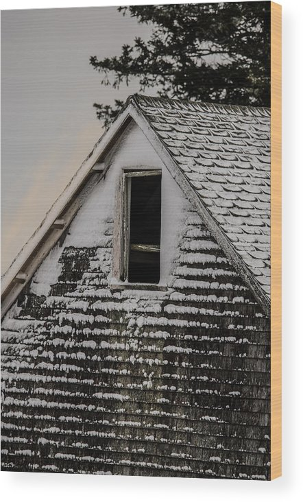 Barn Wood Print featuring the photograph The Crows Nest by Susan Capuano