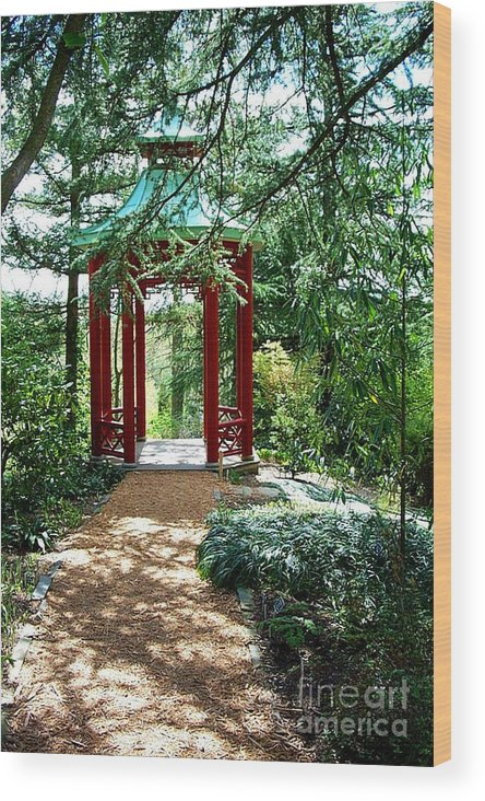 Gazebos Wood Print featuring the photograph Asian Paths No. 29 by Walter Neal