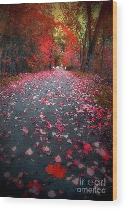 Autumn Wood Print featuring the photograph The Red Leaf by Tara Turner