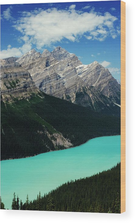 Alberta Wood Print featuring the photograph The Turquoise Colored Peyto Lake by Dan Shugar