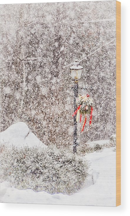 Tree Wood Print featuring the photograph The Weather Outside Is Frightful by Tricia Marchlik