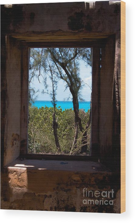 Historic Site Wood Print featuring the photograph Through The Window by Cheryl Hurtak