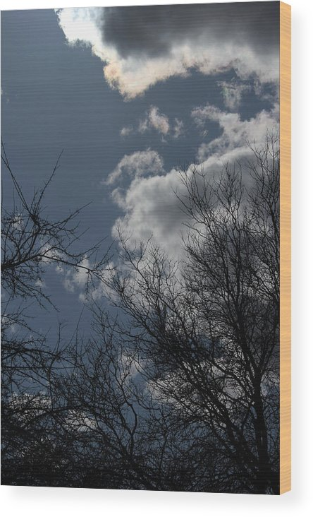 Spring Wood Print featuring the photograph Trees And Clouds 3 by Mary Bedy