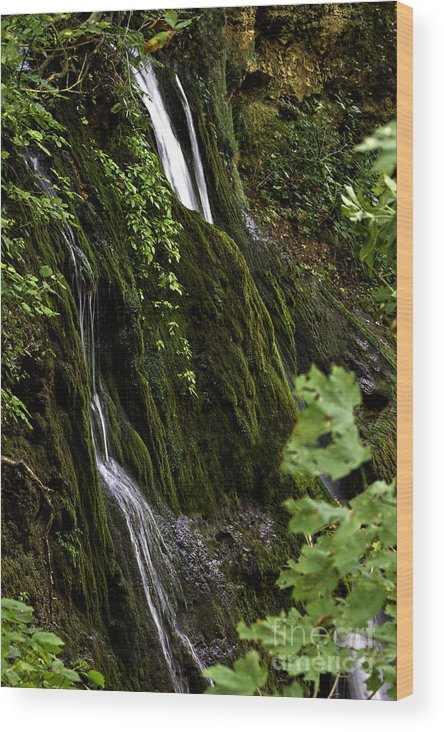 Rural Wood Print featuring the photograph Twin Falls by Ken Frischkorn