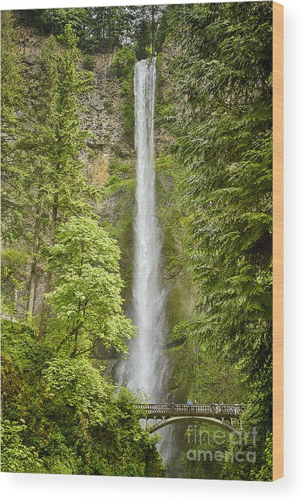 Multnomah Fall Wood Print featuring the photograph Upper Multnomah Falls by Carrie Cranwill